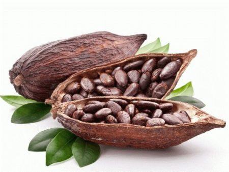 Можно ли пить какао при язве желудка, двенадцатиперстной кишки
