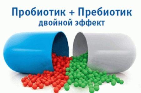 Пре-и пробиотики